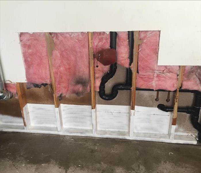 Mold Remediation Mold Done Right With SERVPRO of Southern Butler County  !!