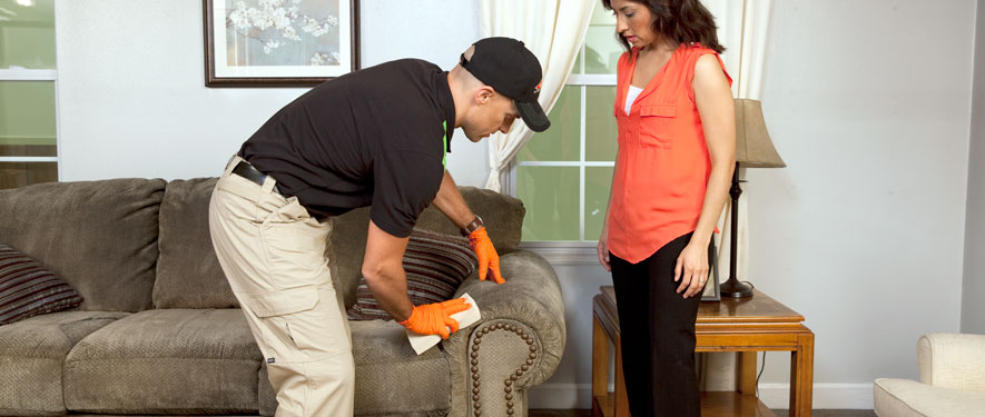 New Castle, PA carpet upholstery cleaning